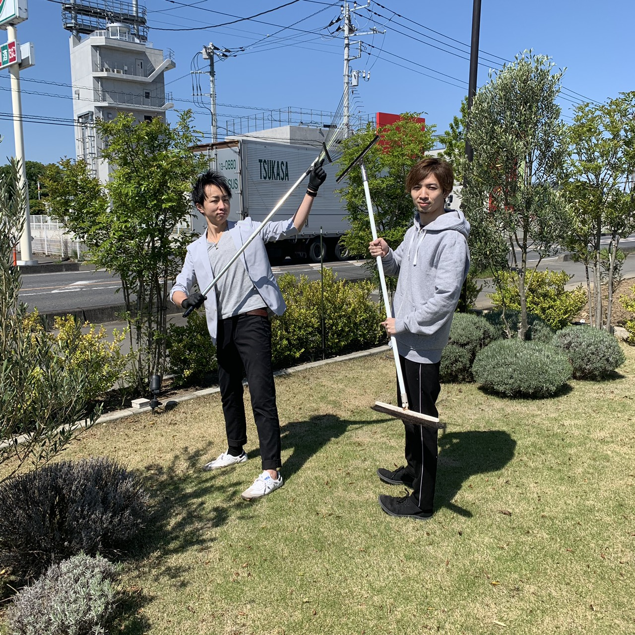 綺麗な植物と庭